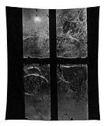 Window At Castle Frankenstein Tapestry