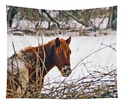 Winter Horse Landscape Tapestry