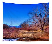 Winter In South Platte Park Tapestry