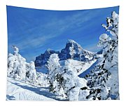 Winter In The Tetons Tapestry