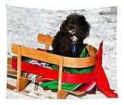 Winter Ride Tapestry