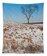 Winter Tree Nachusa Grasslands Tapestry