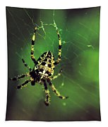 Wolf Spider  Tapestry