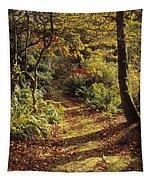 Woodland Path, Mount Stewart, Ards Tapestry