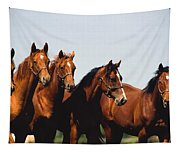 Yearling Thoroughbred Tapestry