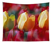 Yellow And Red Tulip Blooms Tapestry