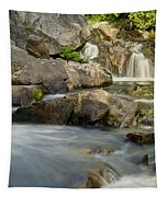 Yellow Dog Falls 4246 Tapestry