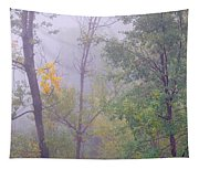 Yellow In The Fog Tapestry