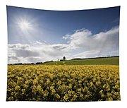 Yellow Rapeseed Field, Newgrange Tapestry