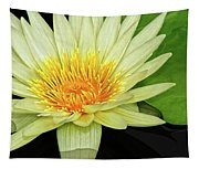 Yellow Waterlily Tapestry