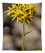Yellow Wildflower At Crater Lake Tapestry