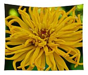 Yellow Zinnia_9480_4272 Tapestry