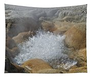 Yellowstone Hot Springs 9499 Tapestry