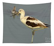 Young American Avocet Tapestry