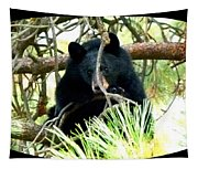 Young Black Bear Tapestry