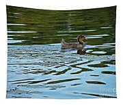 Young Male Garganey Tapestry
