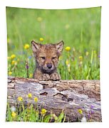Young Wolf Cub Peering Over Log Tapestry