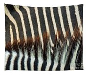 Zebra Stripes Tapestry