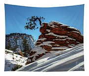 Zion National Park In Winter Tapestry