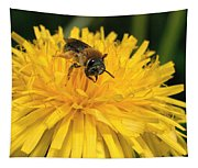 A Bee In A Dandelion Tapestry