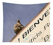 African Collared Dove 2 Tapestry