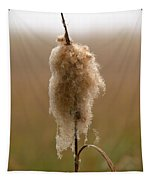 Broadleaf Cattail 3 Tapestry