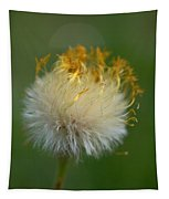 Coltsfoot Tapestry