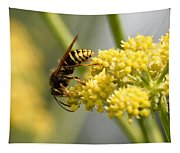 Common Wasp Tapestry
