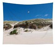 Dunes Of Danmark 2 Tapestry