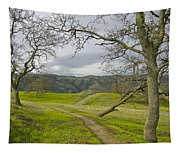 East Ridge Trail Spring Tapestry