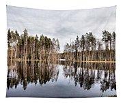 Liesilampi Panorama Tapestry