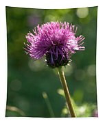 Melancholy Thistle Tapestry