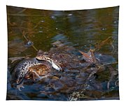 Mixed Frogs Tapestry