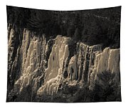 Mountain Side Ice Tapestry