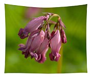 Pacific Bleeding Heart 1 Tapestry