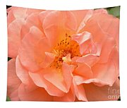 Peachy Perfection Tapestry