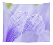 Purple Anemone Flower  Tapestry