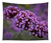 Purpletop Vervain Tapestry