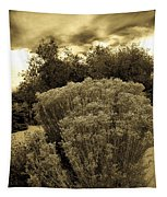 Shrub In Santa Fe Tapestry
