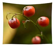 The Berries Of The Lily Of The Valley Tapestry