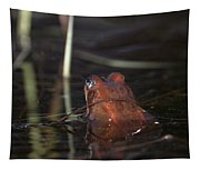 The Common Frog 2 Tapestry
