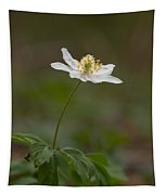 Wood Anemone Tapestry
