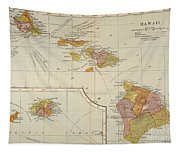 Map: Hawaii, 1905 Tapestry