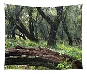 1b6338 Oak Forest On Sonoma Mountain Ca Tapestry