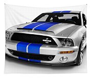 2008 Shelby Ford Gt500kr Tapestry