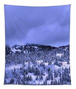 A Utah Winter Tapestry