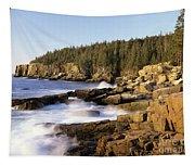 Acadia National Park - Maine Usa Tapestry