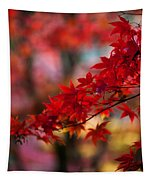 Acer Kaleidoscope Tapestry by Mike Reid