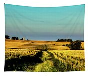 Amber Waves Of Grain Tapestry