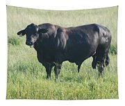 American Cow Tapestry